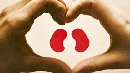 Se realizó el trasplante de riñón número 200 en un sanatorio de Paraná